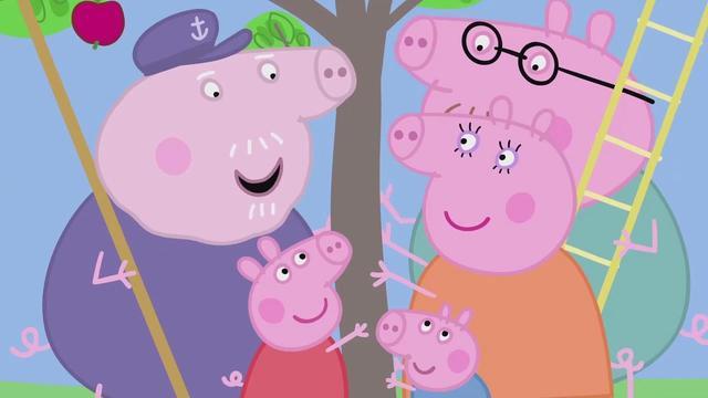 小猪佩奇:佩奇跟猪爷爷摘水果,他们摇晃水果树,掉下来好多果子