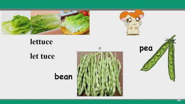 八上英语单词表图片