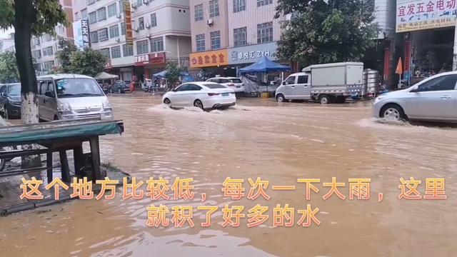 广东龙川麻布岗镇!
