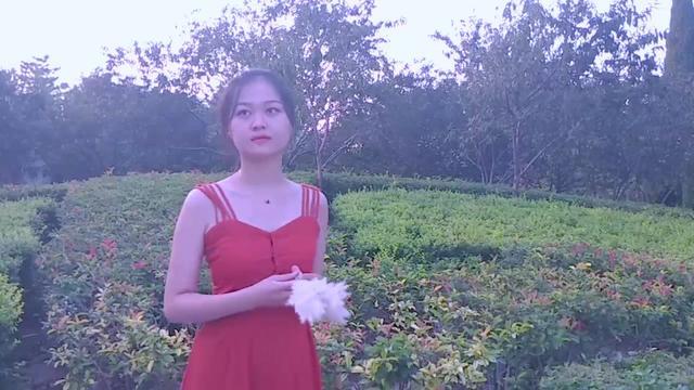 王菲唱的歌中有一句蝴蝶飞不过沧海,是什么歌?
