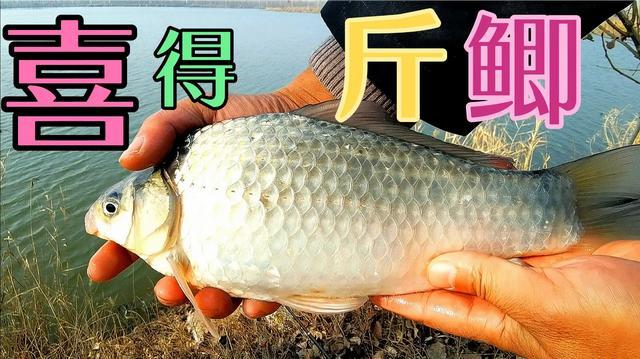 串串火锅图片