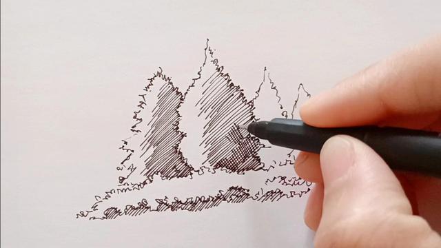 素描松树怎么画