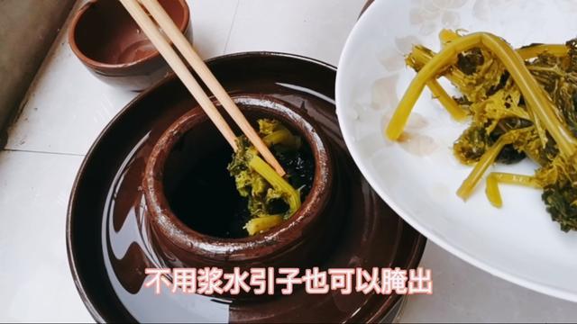 浆水菜合图片