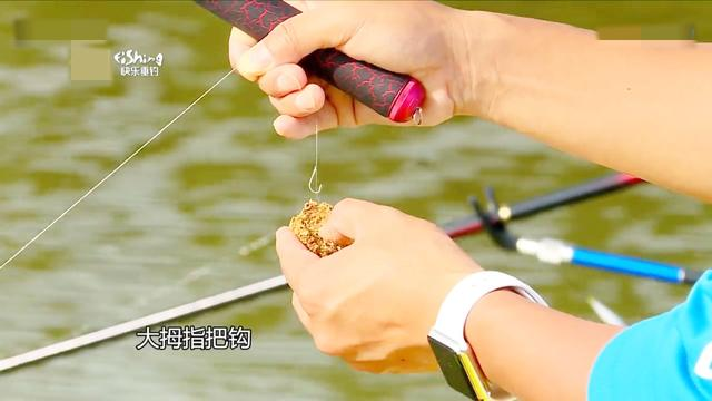 就这样钓鱼:作钓大鲤鱼的鱼饵如何挂钩?抛竿也有技巧,学会了!