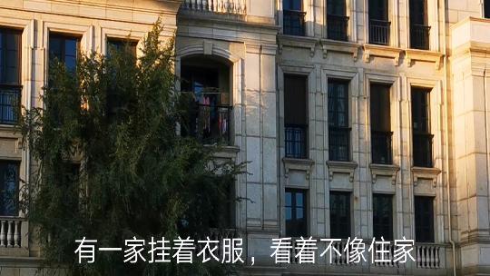 沈阳市浑南区提速项目建设助力两场战役