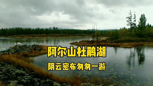 兴安盟杜鹃湖业务图片
