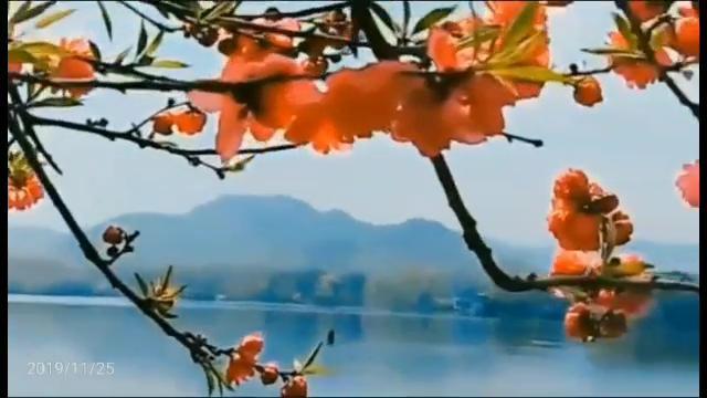 胡琴说-王莉 - QQ音乐-千万正版音乐海量无损曲库新歌热歌天...