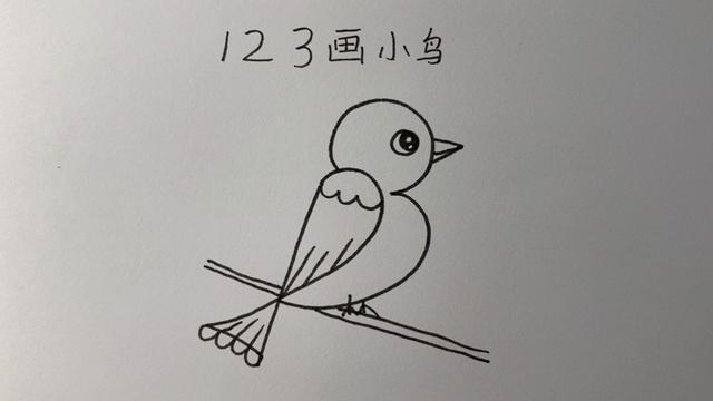 小鸟怎么画简笔画可爱