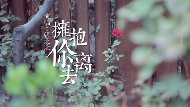 拥抱你离去mp3免费下载_张北北_128K无损歌曲_九酷音乐