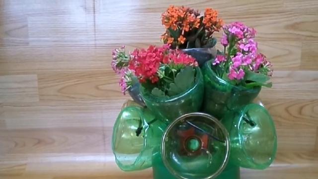 汽水瓶DIY自动吸水花盆,去旅游也不怕植物挂掉