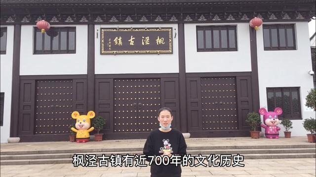 悠闲的枫泾古镇