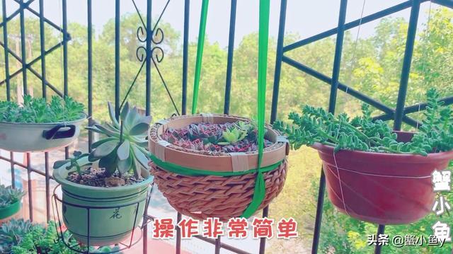 吊篮椅和阳台图片