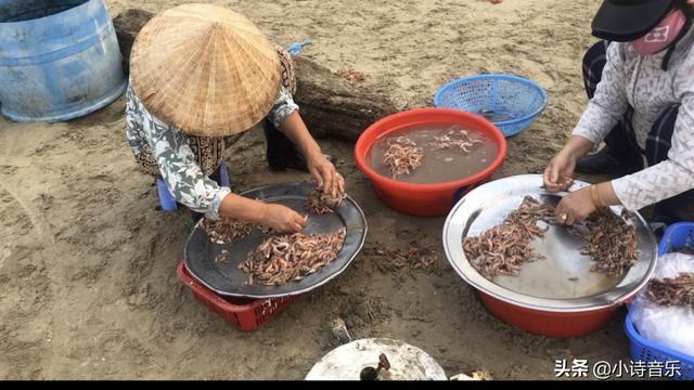岘港EACH CLUB,老帅带你开启美溪沙滩,为什么这么多人喜欢来?