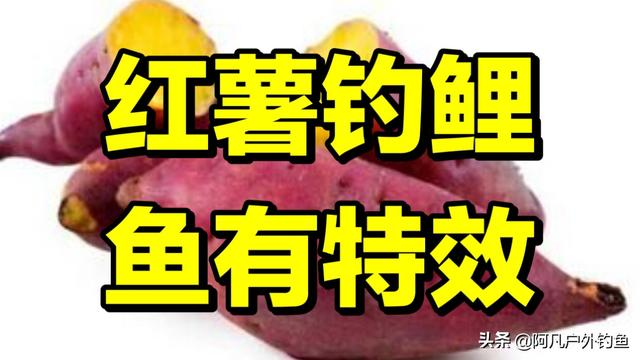 红薯粉条图片