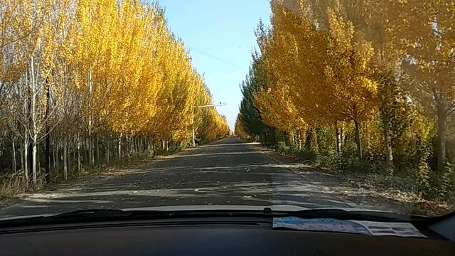 秋天的风景简笔画