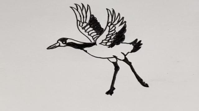 鹤的最简单画法