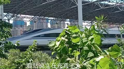 和谐号高铁列车进站震撼场面,带你近距离看高铁。
