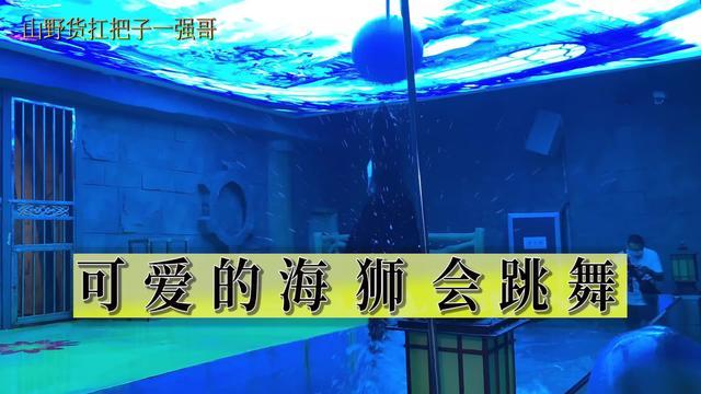 漫游南宏海立方海洋公园_手机搜狐网