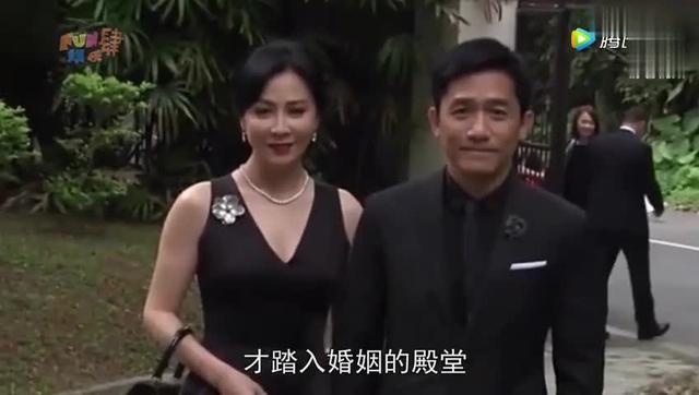 刘嘉玲之丘图片全集