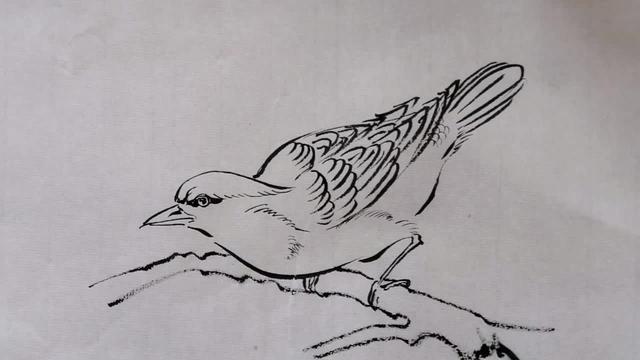 小鸟怎么画卡通