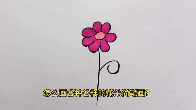 花朵简笔画图片可爱