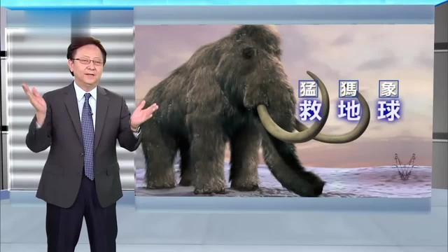 """猛犸象复活计划已达到克隆猛犸象的""""初期阶段""""_东方头条"""
