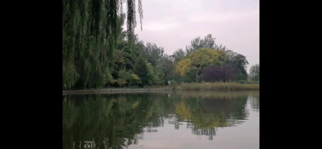 公园景观设计平面图