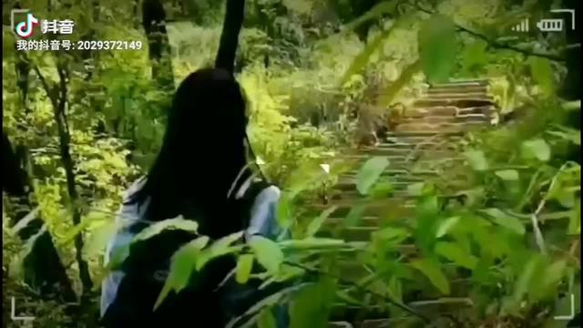 蓝田猿人图片