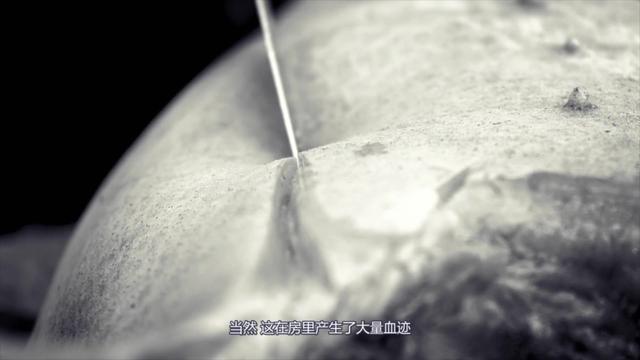 女性尸体解剖图片大全