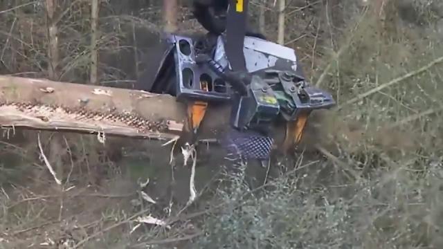 看看德国的木材机械,才知道德国制造名不虚传