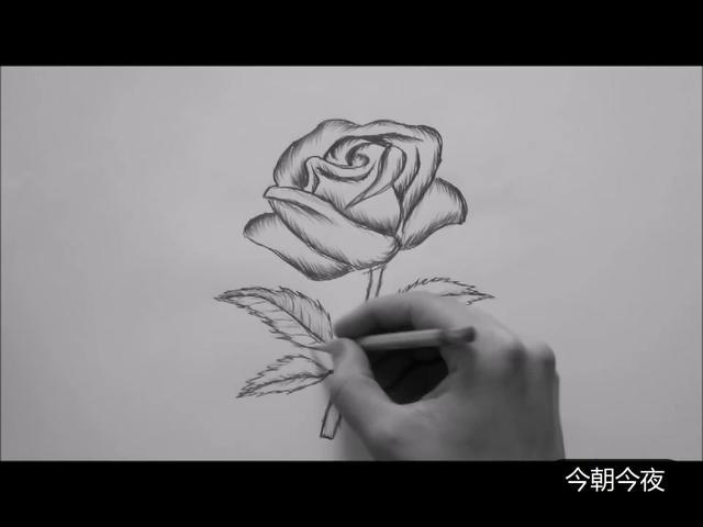 如何一步步用铅笔画花儿