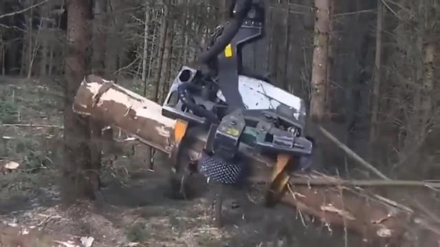 看着德国的木材机械,才知道德国制造名不虚传。