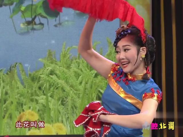 广场舞黄梅调《对花》郎对花,姐对花,歌声美妙动听舞蹈简单好看