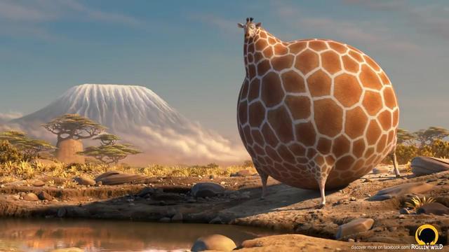 当动物都变胖会发生什么?超有趣的搞笑动画短片