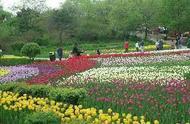 凤凰涅槃 沈阳植物园重新诠释国家5A级景区荣誉