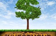 控股合并中在权益法下以权益性投资取得的长期股权投资间接费用为什么要冲减资本公积呢?