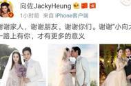 向佐郭碧婷结婚,微博下评论明星集体挨杠,这届网友太优秀
