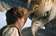 """哈利波特之父入华,海外制片人成中国片方的""""神奇动物""""?"""