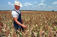 美国1033个农场破产,新债王:他从不还债,破产好几次,美农:被骗了