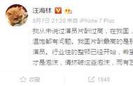 编剧汪海林:中国演员90%片酬不高,片酬最高的是不会演戏的家伙