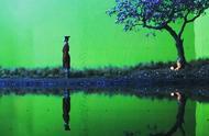 《花木兰》开机,刘亦菲与男主角共浴,外网夸她是最适合的花木兰
