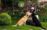 她为养狗花60万买200㎡别墅,隐居15年造出3个仙境花园