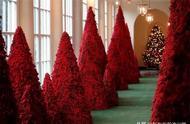 美国第一夫人梅拉尼娅装饰白宫,红色圣诞树又遭网友吐槽……