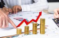 为什么净利润是造假重灾区?为什么净利率超过20%才值得投?