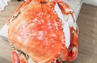 大闸蟹被子火了,吃货们坐不住了!宝宝怎样吃出健康呢?