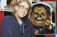 演员彼得·梅休去世 楚巴卡这个角色演了42年
