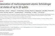 刷新世界纪录!中国学者开发出具有20个超导量子比特的量子芯片