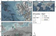 「图」研究发现北极地区每升雪中含有10000多个微塑料