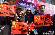 """悉尼华人举行""""爱国护港""""和平集会"""