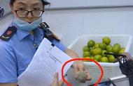 江苏一CoCo奶茶店查出腐烂水果,但未使用 市监局:正在调查